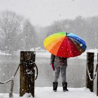 Person standing in snow by a lake, holding a rainbow umbrella.