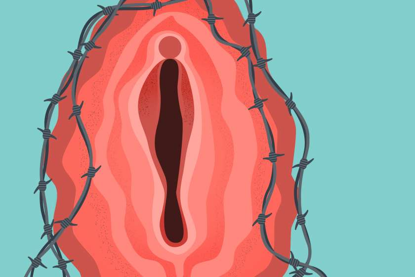 Illustration of a vagina and barbed wire.