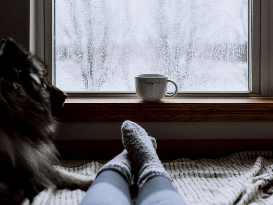 A person's socked feet stretch out on a bed in front of an ice-covered window. A dog sits nearby and a mug sits on the windowsill.